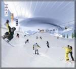 Ski-Dubai-300x270