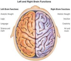 right-leftbrain