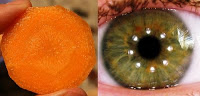 slice carrot eye