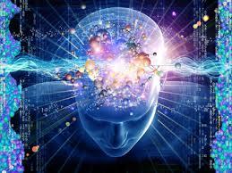 quantum-head